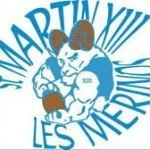 Mérinos Saint-martin XIII