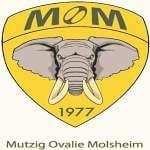 Mutzig Ovalie Molsheim