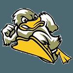 Ducks St Just St Rambert