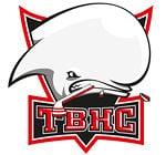 Toulouse Blagnac Hockey Club