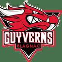 Guyverns
