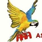 Association Renouveau Athle Asav
