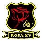 Rugby Olympique Saint Andiolais Xv