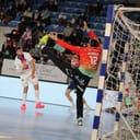 Communication Comite var handball