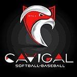 Nice Cavigal Summer league