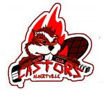 Hockey Club Albertville