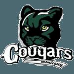 Montigny Baseball Les Cougars