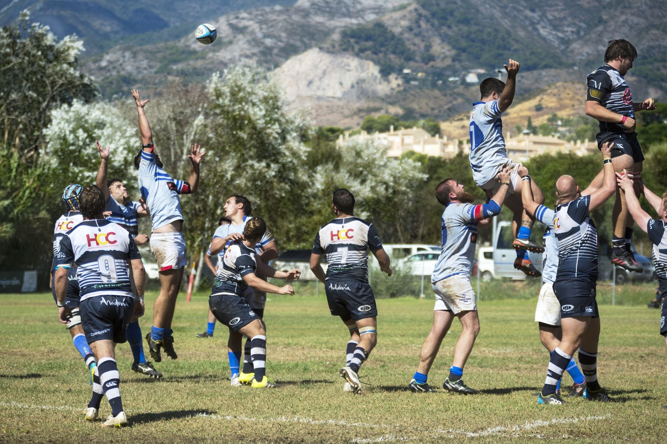 Rugby XIII Division Nationale