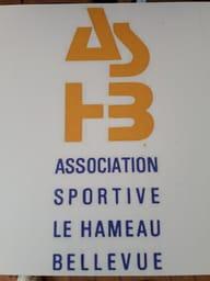 ASSOCIATION SPORTIVE HAMEAU DE BELLEVUE Handisport
