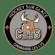 Caribous de Seine et Marne