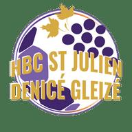 HANDBALL ST JULIEN DENICÉ GLEIZÉ