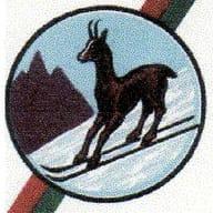 Ski Toy