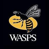 Wasps Youtube