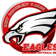 Les Eagles de St Barthélémy