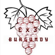 3x3 Burgundy