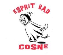 UCS - ESPRIT - BAD Handisport