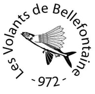 les Volants de Bellefontaine