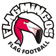 LES FLAGMINGOS FLAG FOOTBALL