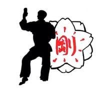 Karate Club Munster