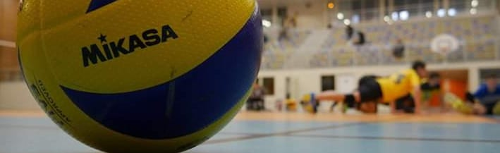 Asv - Arts Et Sports A Villebon