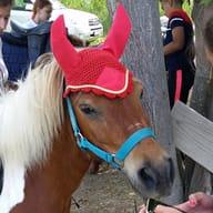 Equestria Passion
