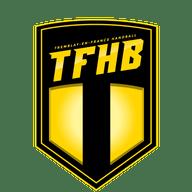 Tremblay en France Handball Amateur