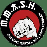 Moderns Martial Arts Saint Herblain