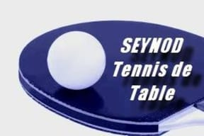 SEYNOD TENNIS DE TABLE Handisport