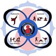 Centre Trad Taekwondo Escalquens