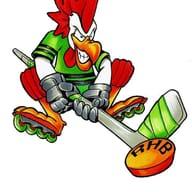 RHB-Hockey Benjamin U15