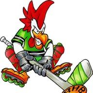 Roller Hockey Bressan