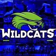 Wildcats de Reims