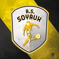 AMS Soyaux