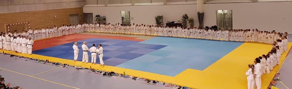 Bois-Colombes Sports Judo-Jujitsu