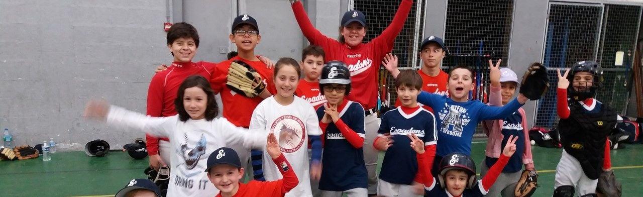 Troyes Saint-Julien Espadons Baseball Softball Club