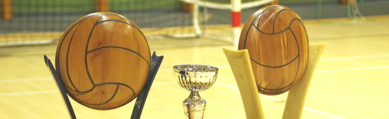 Volley Loisirs 21