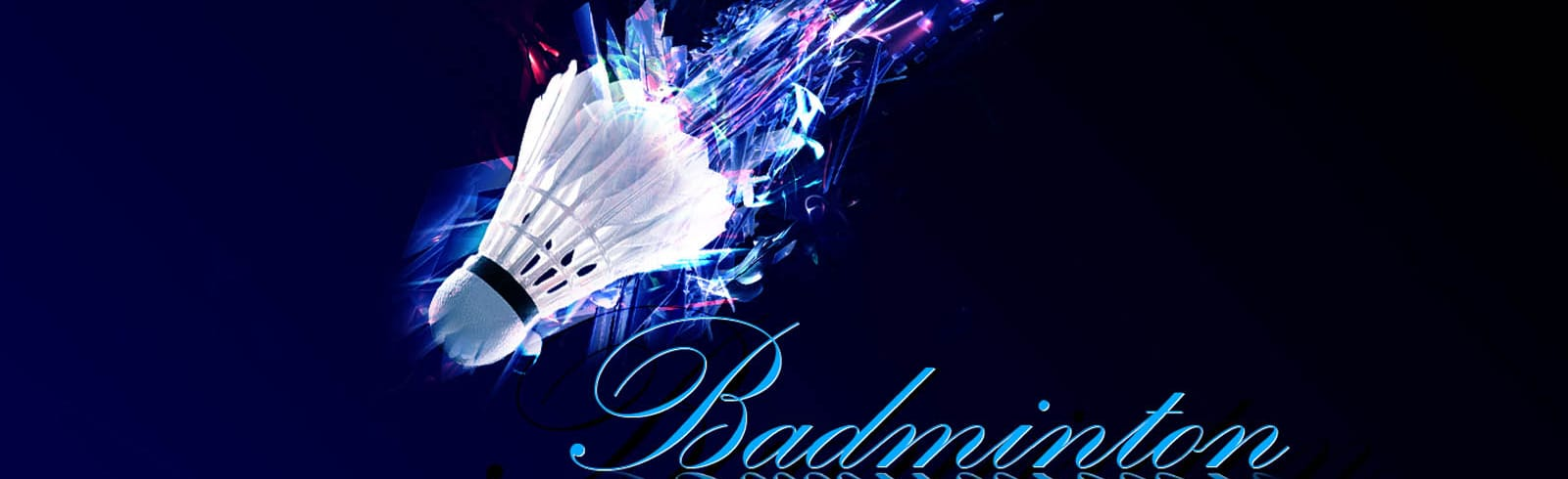 Phoenix Badminton Club