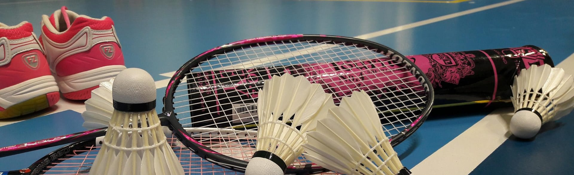 Metz Badminton