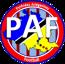 Pyrenees Ariegeoises Football U15 - Phase Dépt