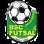 Bruguieres SC U15 Promotion 1ère Division Saison 2017-2018