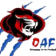 Olympique Arras Football U18 D1