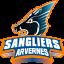 Sangliers Arvernes