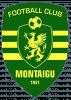FC Montaigu 85 Division 1