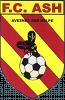 FC Avesnes S/Helpe 96