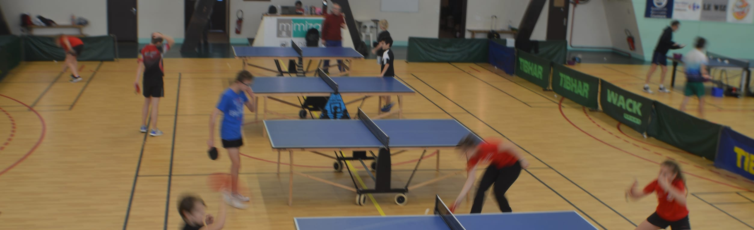 Tennis Table Mimizannais
