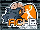 Ales Cevennes Handball