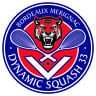 Dynamic Squash 33