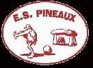 Ent sur Les Pineaux Division 5 2019-2020