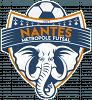 Nantes Metropole Futsal