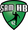 Saint Etienne Masculin Handball